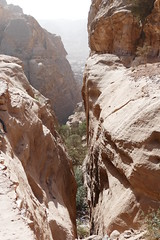Climbing Down from the Monastery at Petra (33)
