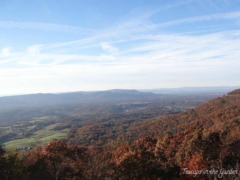 11-Shenandoah Valley