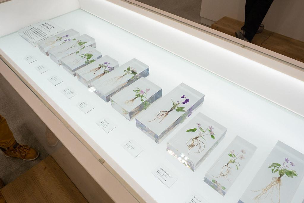 TAKAO_599_MUSEUM-20