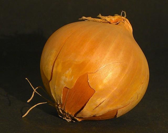 Onion, Nikon COOLPIX P90