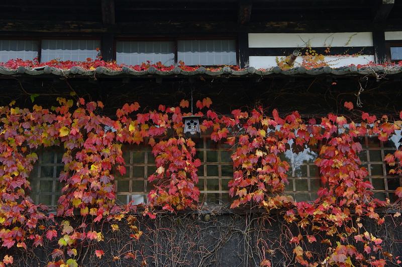 窓を彩る_201811