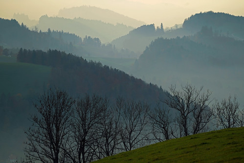 trees hills bushes haze haziness foothills appenzell landscape countryside forests fog depthoffield relaxing view viewpoint