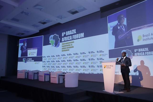 6th Brazil Africa Forum: 3rd panel November 23
