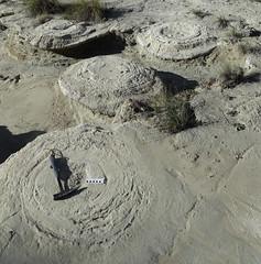 Megasismitas en dep�sitos lacustres - Rambla de los Pilares, Castill�jar (Granada, Espa�a) - 09