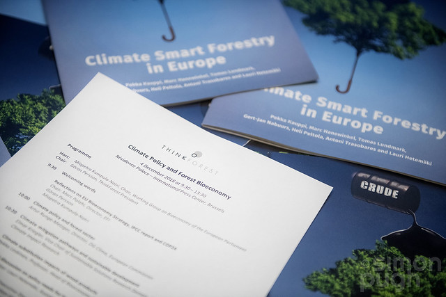 European Forest Institute: Climate Policy and Forest Bioeconomy 2018