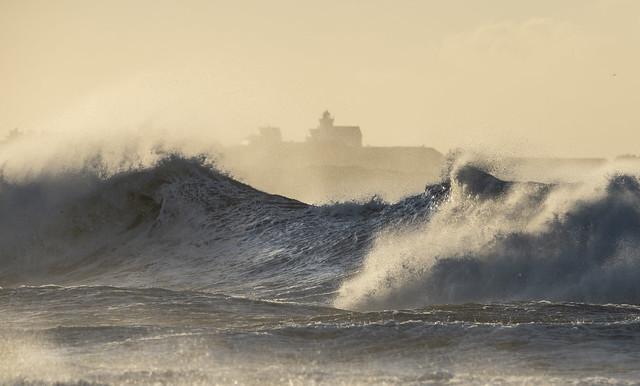 Stormy morning - VJ3_6580, Nikon D850, Sigma 150-600mm F5-6.3 DG OS HSM | S