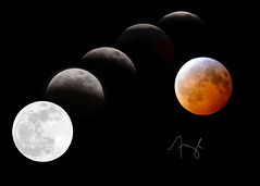 2019 LUNAR ECLIPSE