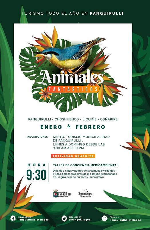 Afiche Animales Fantasticos