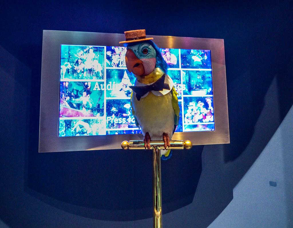 Animatronic bird WDFM