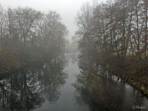 Morgennebel an der Saale bei Weißen/Thüringen