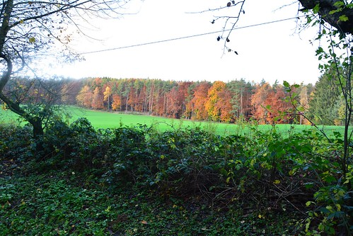 Goldener Herbst rund um den Wiesenhof