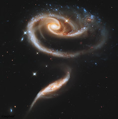 "NASA's Hubble Celebrates 21st Anniversary with ""Rose"" of Galaxies. Original from NASA. Digitally enhanced by rawpixel."