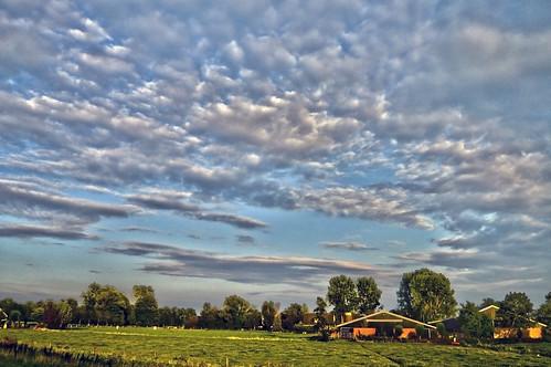 Frysian landscape near Rottevalle, Fryslân - The Netherlands (1199967)