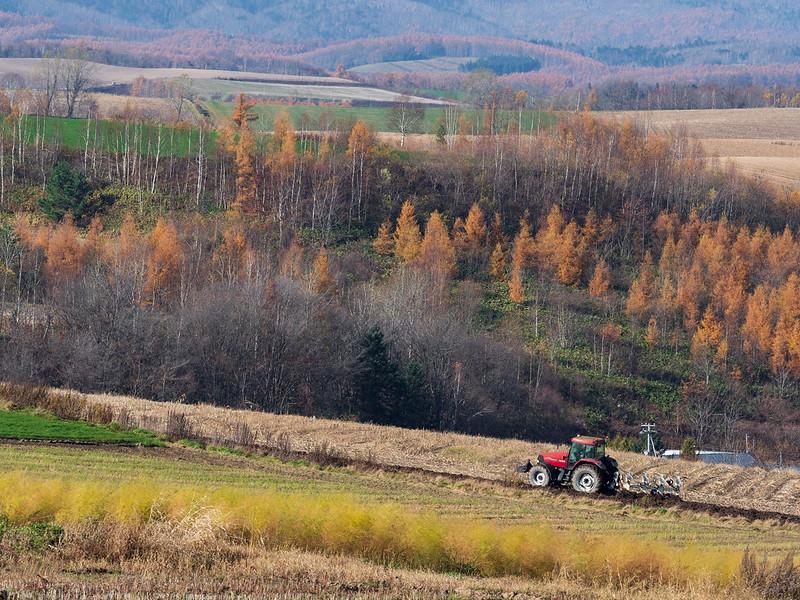 秋の美瑛の畑と農作業車