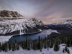 Sunrise At Peyto Lake