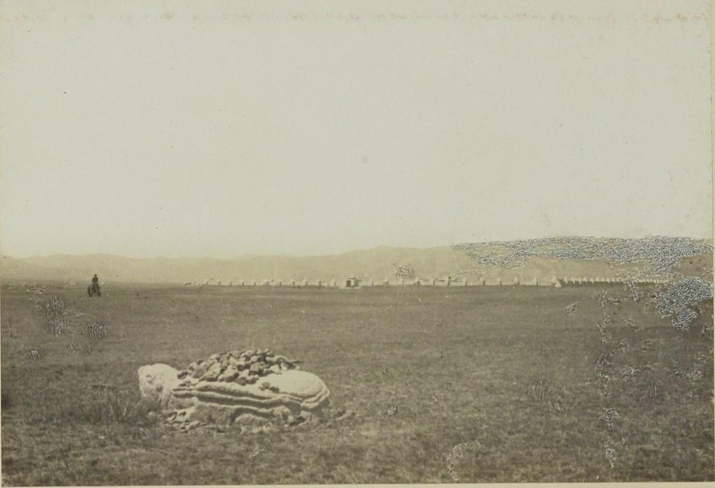 20.  Каменная черепаха возле Эрдена Дзоу. 5 июля.
