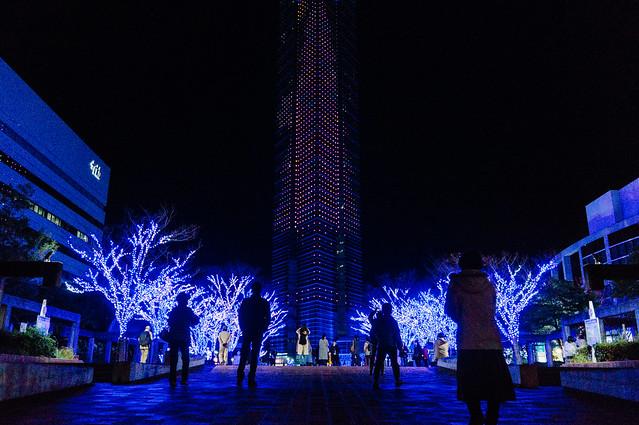 Hakata_Tower_02