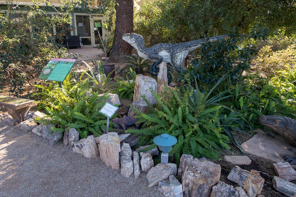 Aloe Alley at Tucson Botanical Gardens