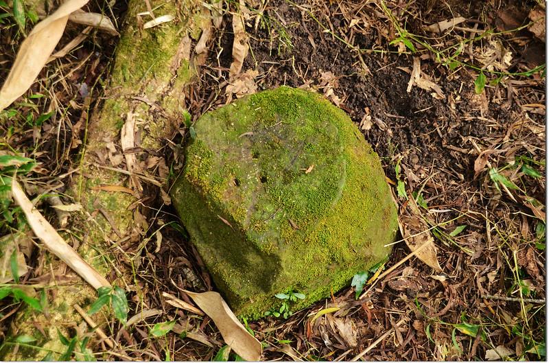 三縣界山三凹點自然石基石(Elev. 957 m) 1