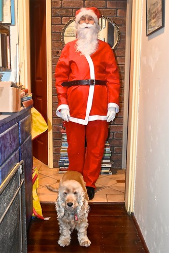 Santa helper Jill Weaver and Millie  Dec 2018