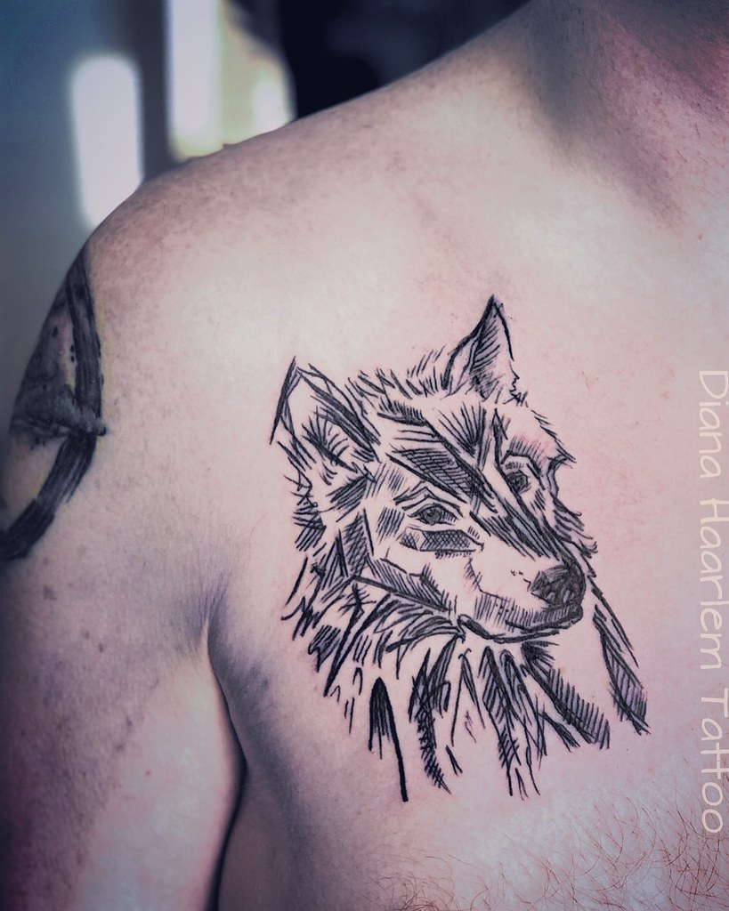 Seff Wolf Tattoo Haarlem Tattoo Flickr