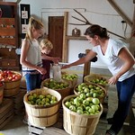 Thu, 09/20/2018 - 2:21pm - Family picking apples Dougherty Orchard  NS