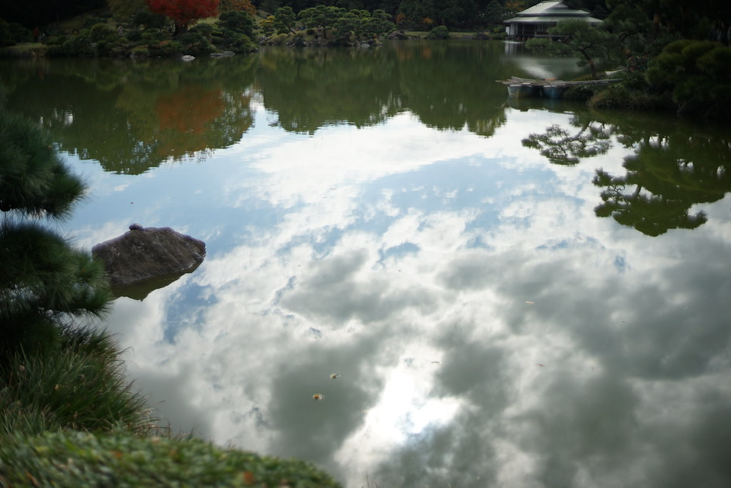 清澄庭園_池