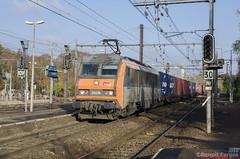 [SNCF] BB 26216 - Photo of La Forêt-Sainte-Croix