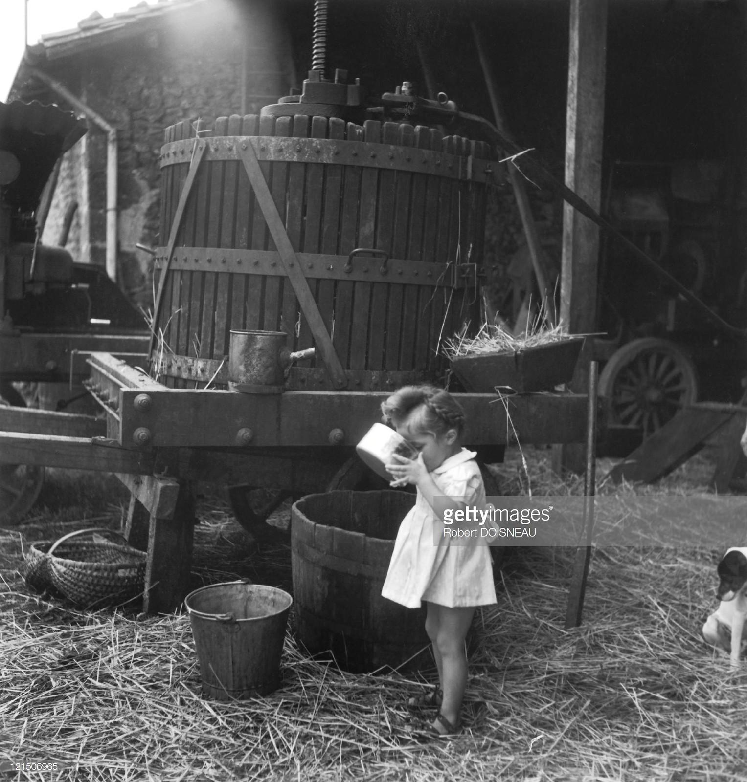 1947. Яблочный сок в Сен-Сованте