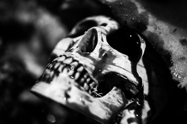 Skull b+w