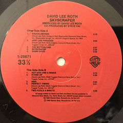 DAVID LEE ROTH:SKYSCRAPER(LABEL SIDE-B)