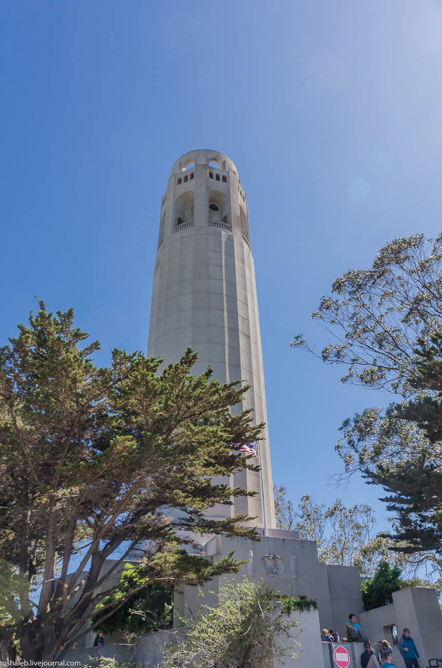 SFO_Coit Tower-82