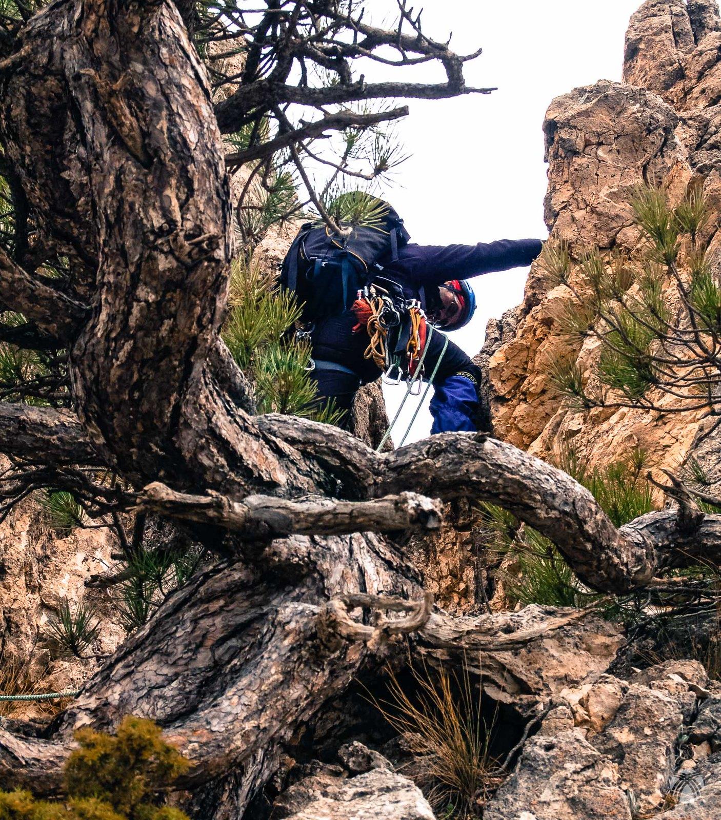 Encuadre que resume la cresta sur de la Sagra: pinos, rocas y cuerda