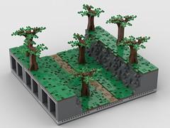 wooded ravine