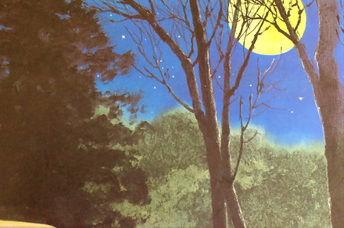 """Night Tree"" by Eve Bunting. Illustrated by Ted Rand."