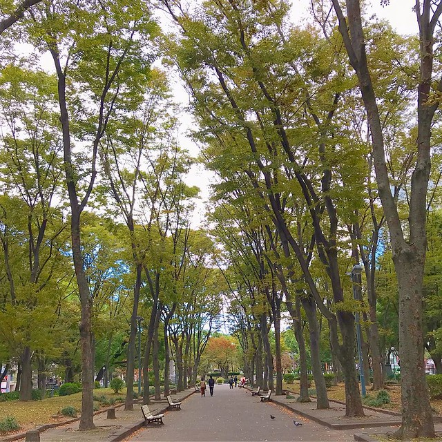 Photo:久屋大通公園 By Kanesue