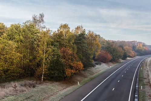 Autumn morning motorway