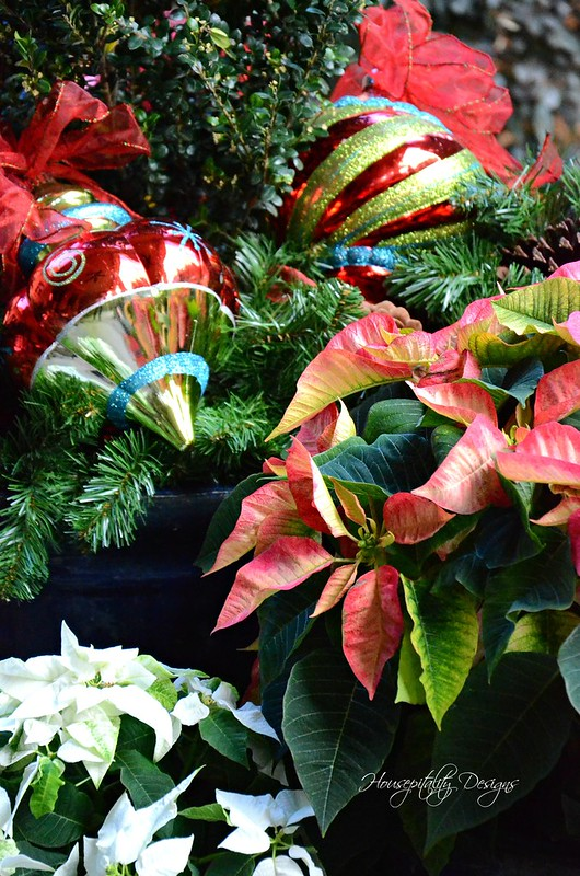 Poinsettias-Housepitality Designs