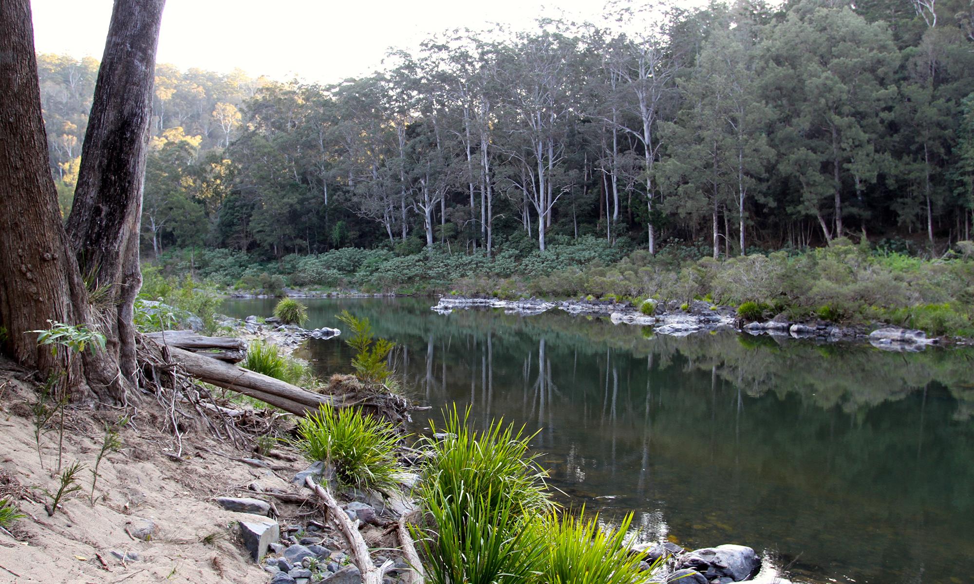 nymbodia-river