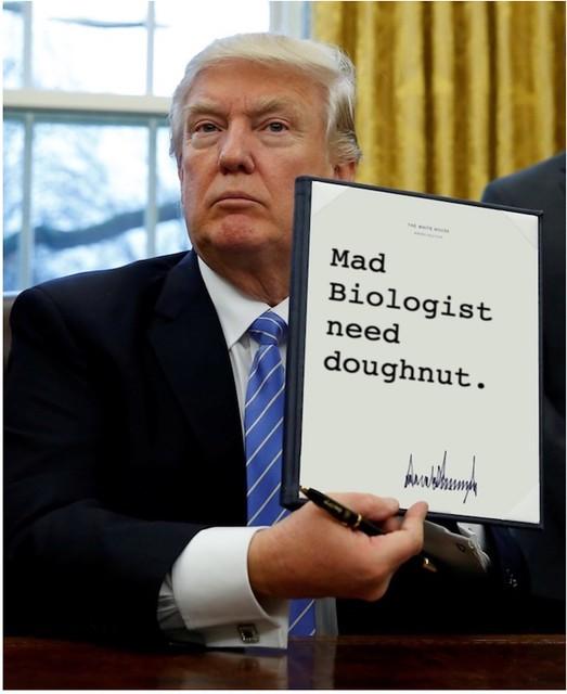 Trump_needdoughnut