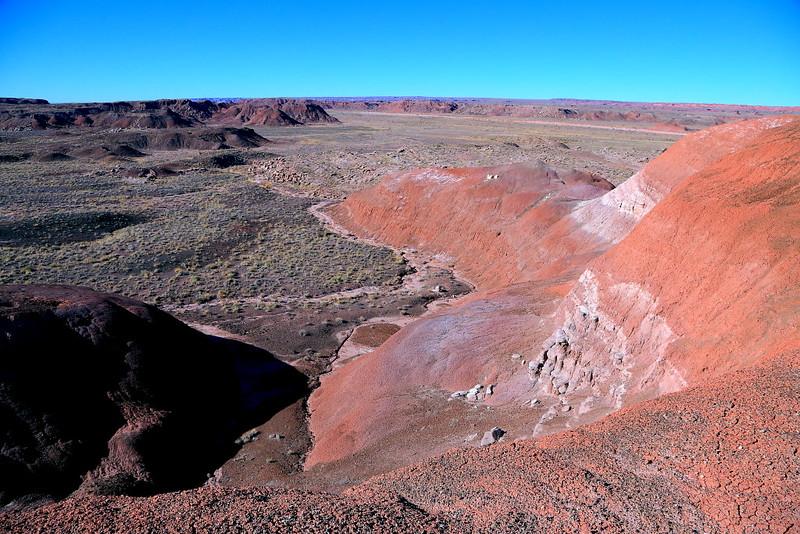 IMG_4853 Painted Desert