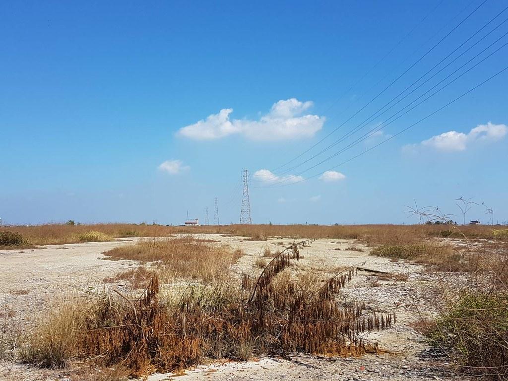 天泰為在嘉義鹽田的案場因台電興建電塔而填土,不像鄰近的鹽灘地上吸引水鳥棲息。照片來源:天泰能源