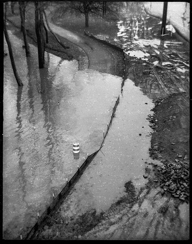 lookingdown floodwaters urban park urbanpark flooded reflections frenchbroadriver asheville northcarolina ferrania ferraniatanit rerapan400 ilfordilfosol3developer 127 127film film monochrome monochromatic blackandwhite landscape urbanlandscape