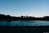 Photo:20181214160459_0061_ILCE-7RM3_FE_24mm_F1.4_GM.jpg By iLoveLilyD