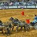 Texas Health chuckwagon negotiates a turn in the chuckwagon races, Fort Worth Stock Show Rodeo, Feb. 1, 2019