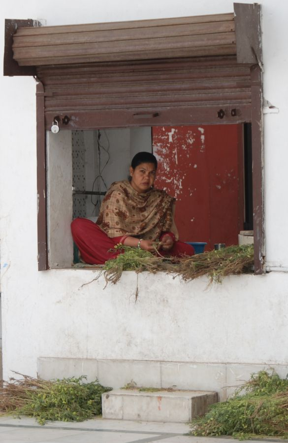 DSC_9978IndiaAmritsarShreeDurgianaTemple