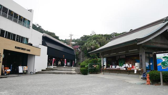 鵜戸神宮①