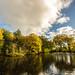 Autumn in Moor Park
