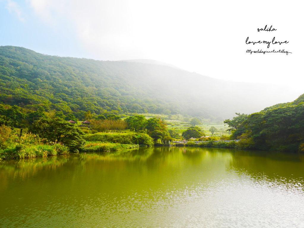 台北一日遊陽明山私房秘境推薦好玩好走親子景點大屯自然公園 (12)
