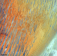 Ribbons of Saharan sand dunes seem to glow in sunset colors. Original from NASA. Digitally enhanced by rawpixel.